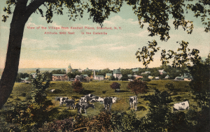 View_of_Stamford,_New_York,_circa_1911