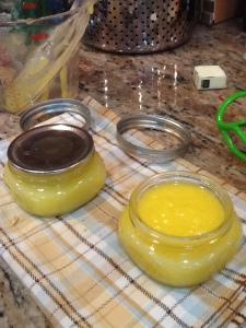 curd in jars